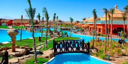 Poolen på hotell Jungle Aqua Park i Hurghada, Egypten.