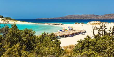 Strand på Elafonisos, Peloponnesos, Grekland.