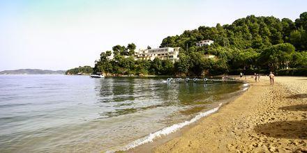 Tzaneria Beach på Kanapitsa-halvön, Skiathos.