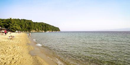 Vromolimnos beach på Kanapitsa-halvön, Skiathos.