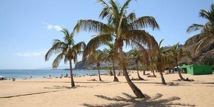 Playa de las Terrecitas på Teneriffa.