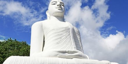 Big Buddha-statyn i Kandy.