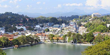 Lake Kandy – stadens hjärta.