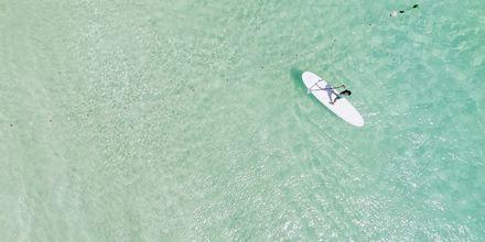 Surfare vid Santa Maria Beach på ön Sal, Kap Verde.