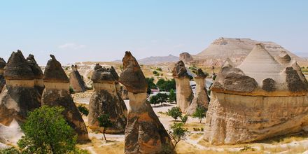 Dalen Pasabag Valley strax utanför Göreme i Kappadokien, Turkiet.