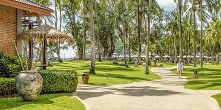 Apollos hotell Katathani Phuket Beach Resort & Spa ligger precis vid Kata Noi Beach.