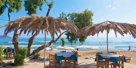 Slå dig ner vid en taverna vid stranden i Kato Stalos på Kreta, Grekland.