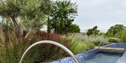Dubbelrum med plunge pool på hotell KB Ammos på Skiathos, Grekland.