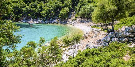 Längs Kefalonias gröna kust finns små mysiga badvikar.