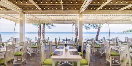 Restaurang  Beach Club på Khaolak Emerald Beach Resort, Thailand.