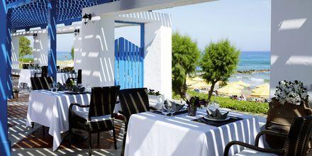Apollos hotell Rinela Beach Mitsis Hotels i Kokkini Chani
