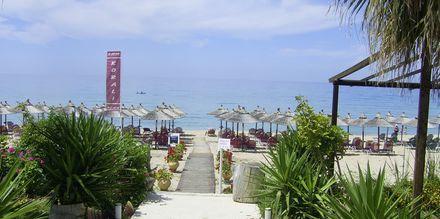 Stranden vid hotell Korali House i Vrachos, Grekland
