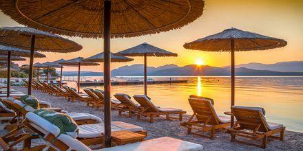 Vacker solnedgång på Korfu, Grekland.