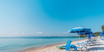 Barbati-stranden på Korfu, Grekland.