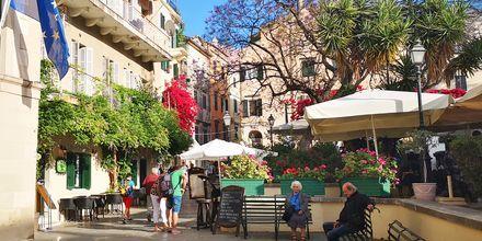 I gamla stan i Korfu stad finns det gott om små torg med restauranger och caféer.