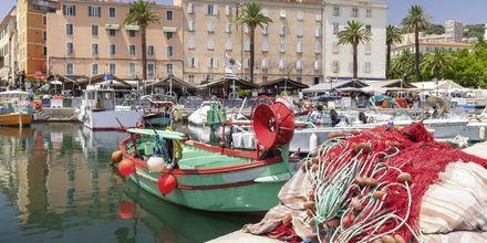 Hamnen i Ajaccio.