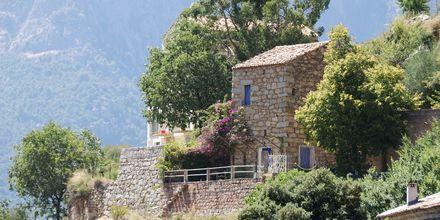 Ota på Korsika.