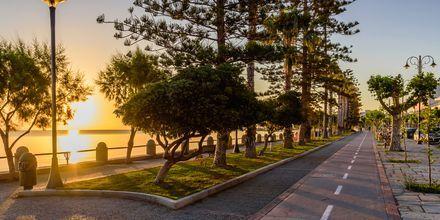 Promenad längs vattnet i Kos stad i Grekland.