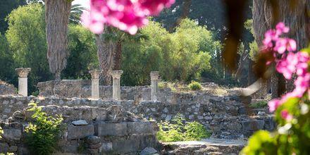 Templet Asklepion är den arkeologiskt viktigaste platsen på Kos.