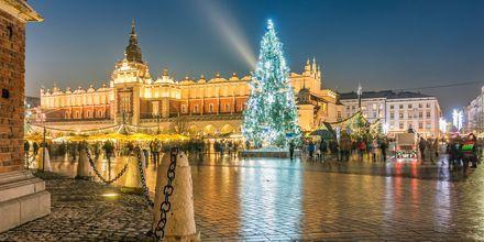 Julmarknad i Krakow.
