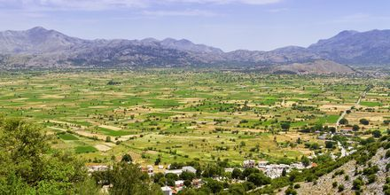 Grönskande landskap på Kreta.