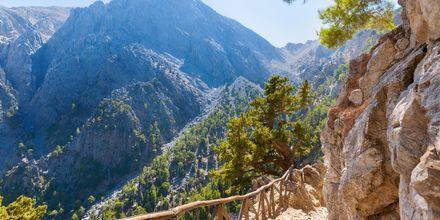 Gillar du att vandra är Samariaravinen på Kreta ett måste!