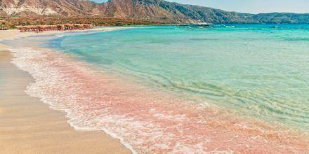 Den berömda stranden Elafonissi på Kreta, med sin vackra rosa sand.