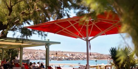 Hamnpromenaden i Sitia på Kreta, Grekland.