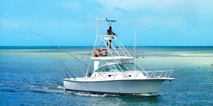 Djuphavsfiske på Kuba.