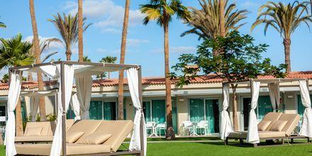 Område reserverat för gäster i rum för vuxna över 18 år.