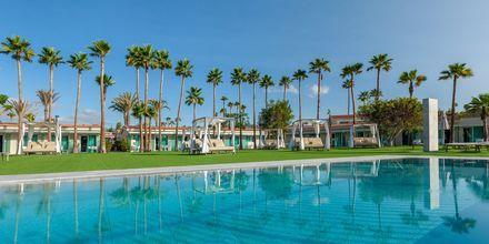 Pool i område reserverat för gäster i rum för vuxna över 18 år.