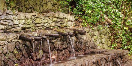 Fyll på vattenflaskan när du vandrar på La Gomera - Chorros de Epina är en magisk vattenkälla på ön.