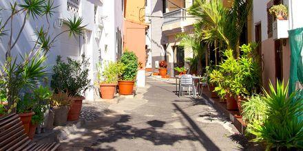 La Calera är en liten by som ligger i närheten av Valle Gran Rey på La Gomera, Kanarieöarna.
