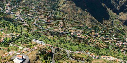 Odlingsterrasser i Valle Gran Rey på La Gomera, Kanarieöarna.