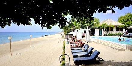 Strand och poolområde på Lamai Wanta Beach Resort på Koh Samui, Thailand.