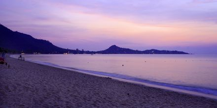 Strand vid Lamai Wanta Beach Resort på Koh Samui, Thailand.