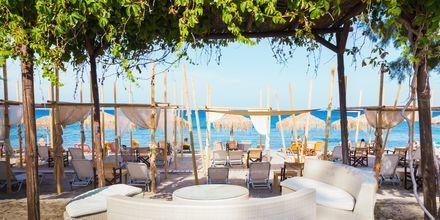 Strandrestaurang i Lambi på Kos, Grekland.