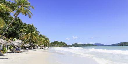 Pantai Cenang på Langkawis sydvästkust är den mest välbesökta stranden.