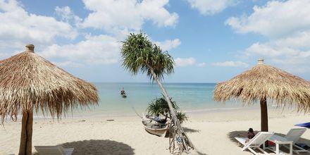 Stranden vid hotell Lanta Casa Blanca på Koh Lanta i Thailand.
