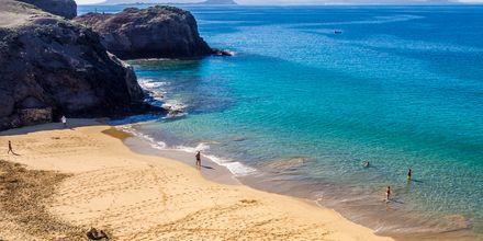 Stranden Papagayo Beach på Lanzarote, den mest populära av Papagayostränderna.