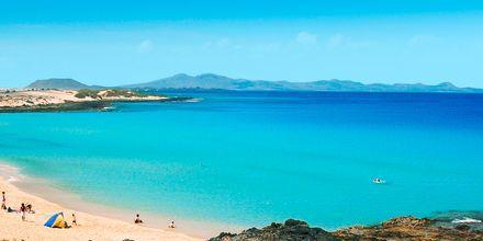 Strand vid Las Marismas på Fuerteventura, Kanarieöarna.