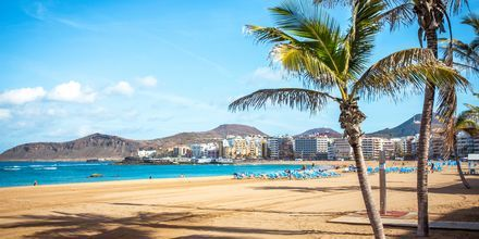 Sandstranden Las Canteras i Las Palmas.