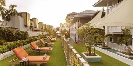 Solterrass på Loligo Resort Hua Hin i Thailand.