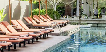Pool på hotell Loligo Resort Hua Hin i Thailand.