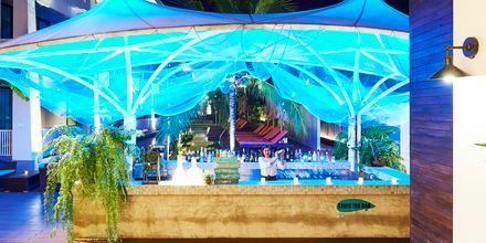Bar på Loligo Resort Hua Hin i Thailand.