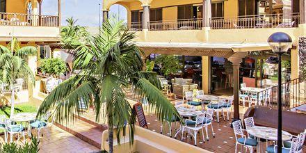 Café/bar på hotell Los Alisios på Los Cristianos, Teneriffa.