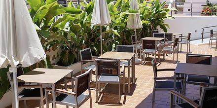 Poolbaren på Los Cardones Boutique Village i Playa de las Americas, Teneriffa.