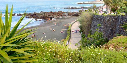 Strandpromenad i Los Cristianos på Teneriffa, Kanarieöarna.