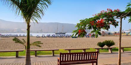 Den vackra strandpromenaden i Los Cristianos.