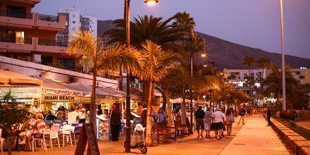 Kväll i Los Cristianos på Teneriffa, Kanarieöarna.